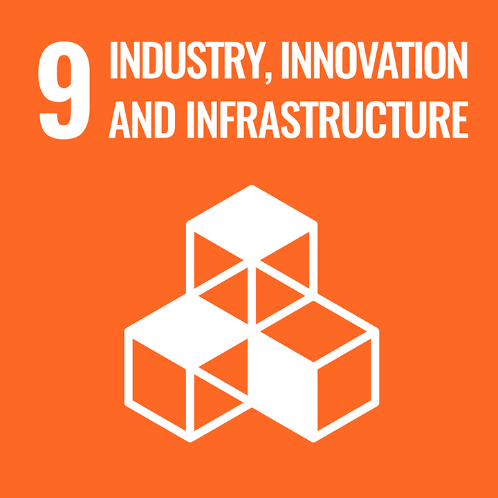 Industry, innovation and infraestructure